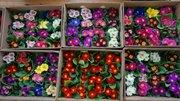 Цветы тюльпаны,  примулы,  гвоздики к праздникам 14 февраля и 8 марта