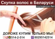 Продать волосы в Гродно.